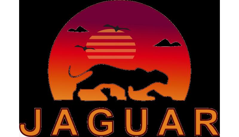 Jaguar Serviços Automotivos